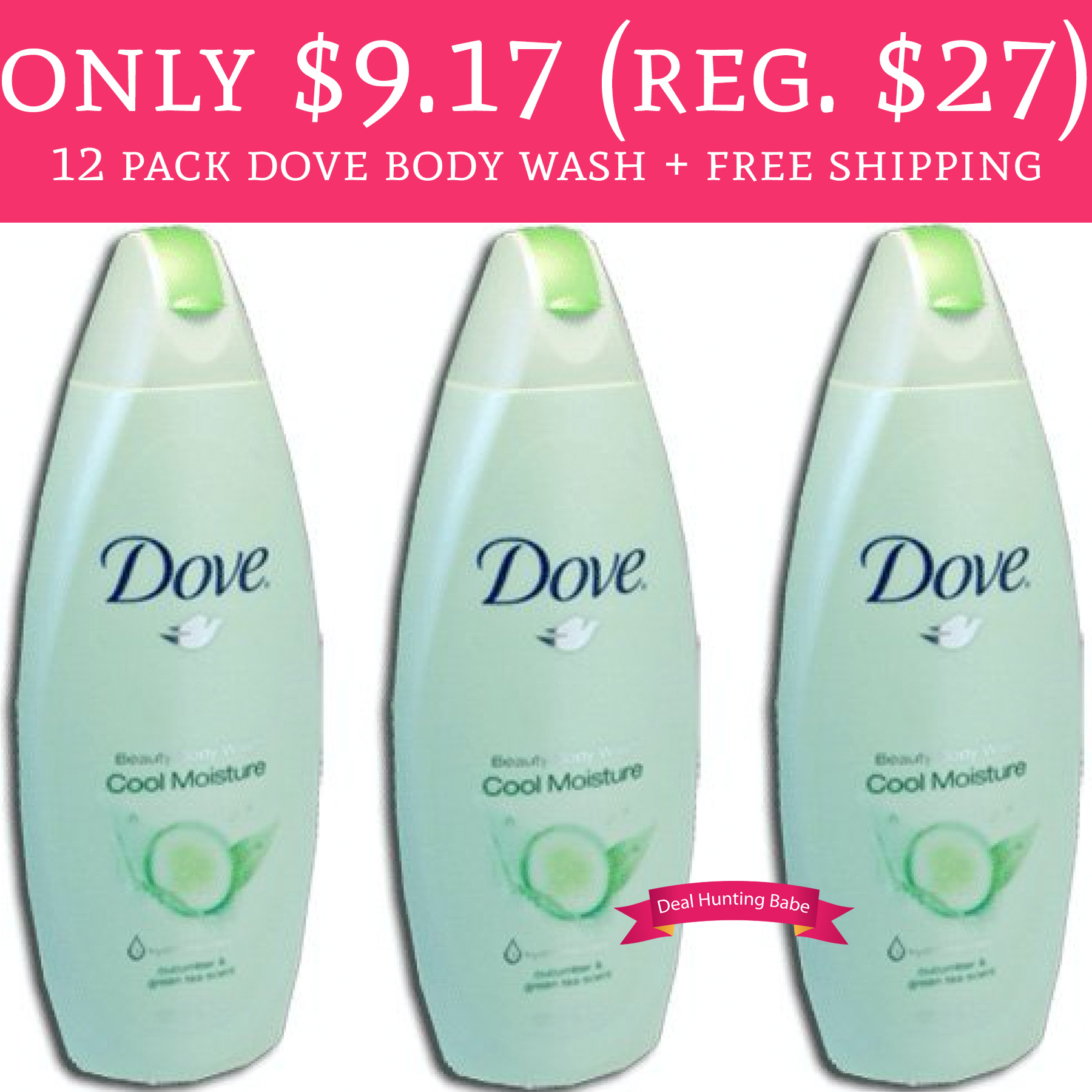 RUN! Only $9.17 (Regular $27) 12 Pack Dove Body Wash + Free Shipping - Deal Hunting Babe