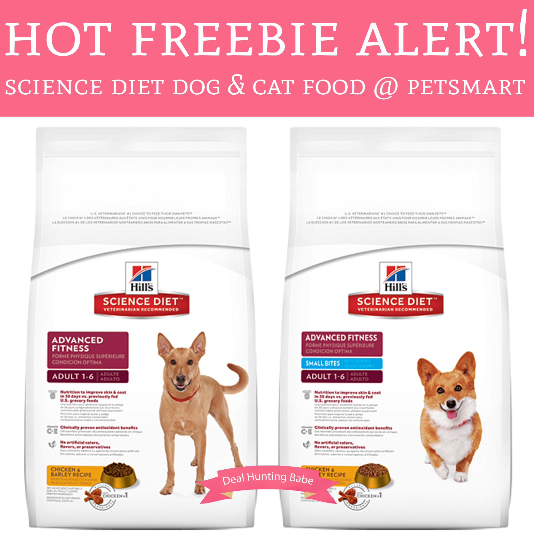 Hot! Free Bag Of Science Diet Dog And Cat Food @ Petsmart