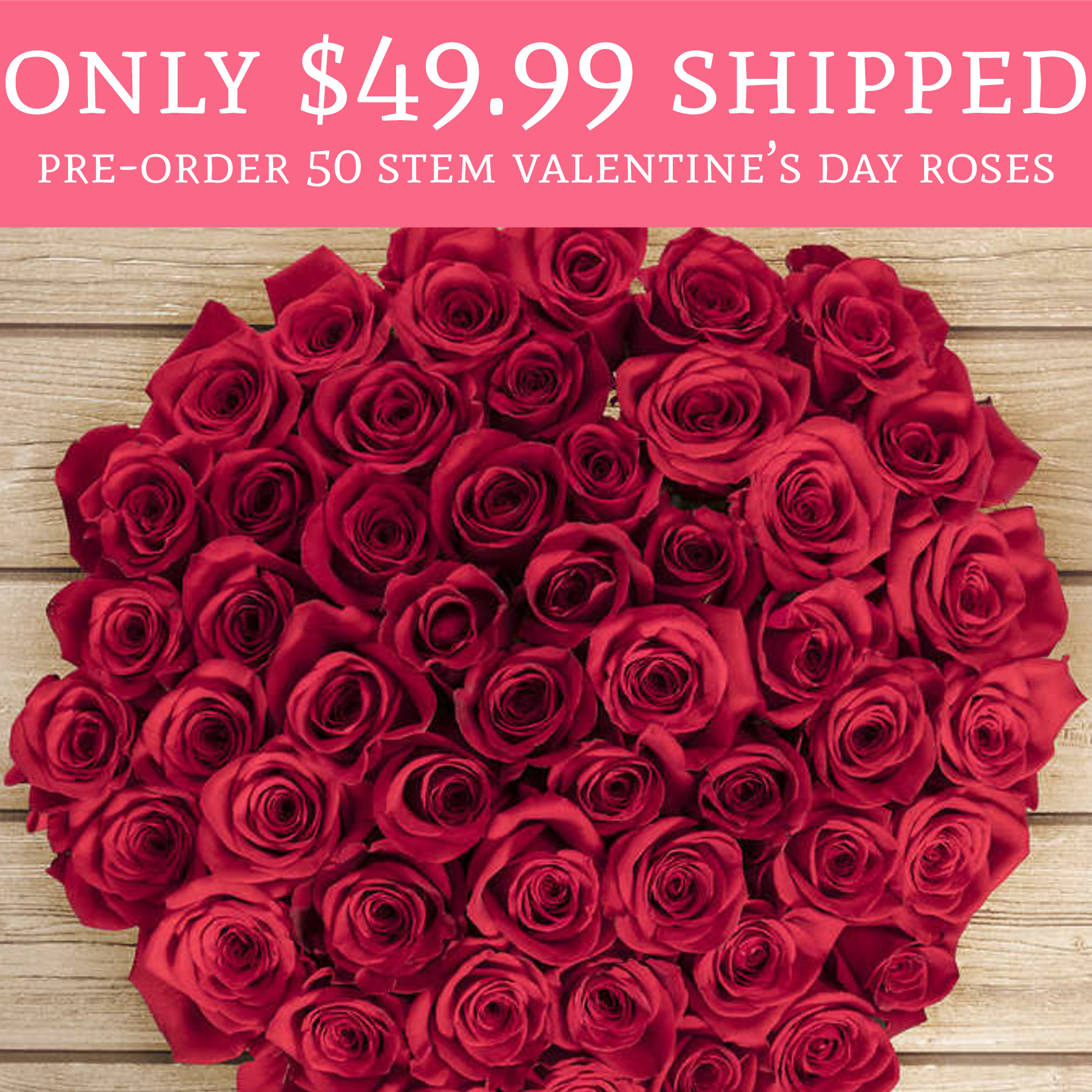 Only shipped pre order 50 stem valentine 39 s day for Buying roses on valentines day